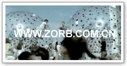 Click for more zorb ball case